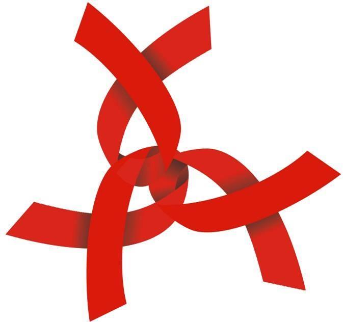 Peel HIV/AIDS Network
